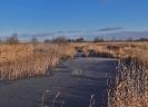 Landschapsfoto's van Dico